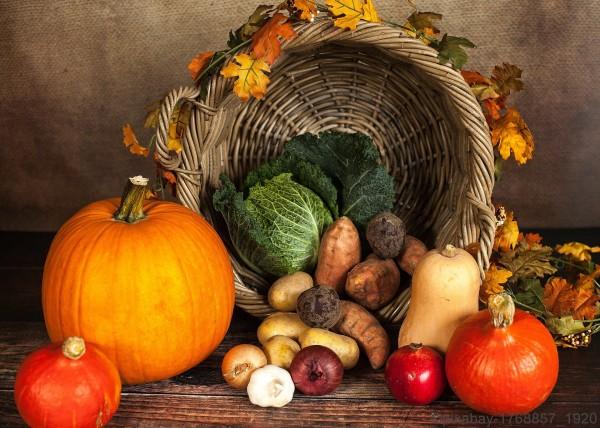 Vegetarische-Gerichte-fuer-den-Winter